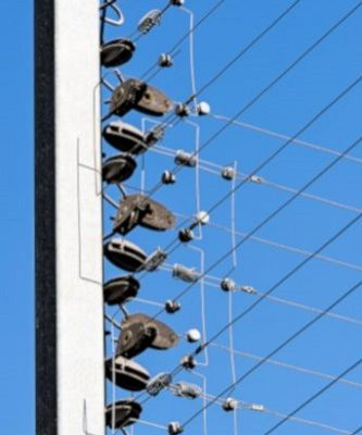 Electric Fencing and Perimeter Intrusion Detection (PIDS)